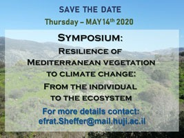 Symposium:  Resilience of  Mediterranean vegetation to climate change: From the individual  to the ecosystem