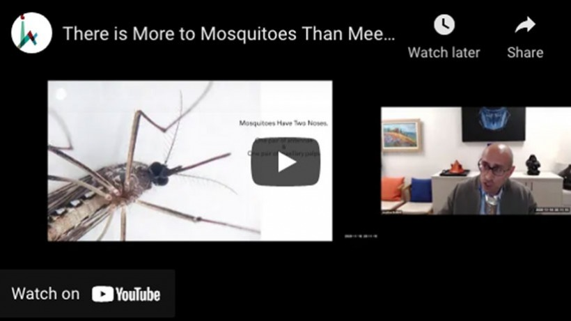 More to Mosquitoes Than Meets the Nose