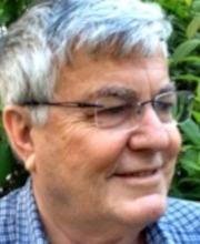 Amnon Schwartz
